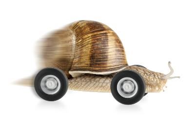 Snail going fast on wheels