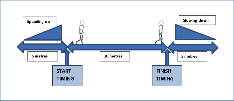 How Long Is A Meter : Walking speed part how fast should i walk to cross the